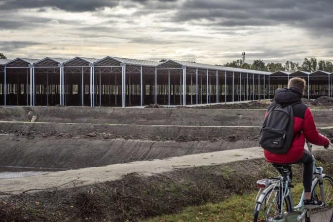 Peel en Maas trekt lering uit een Meijelse kas en gaat ongebruikte bouwvergunningen na drie jaar intrekken