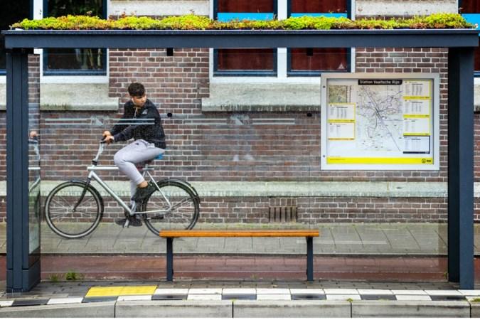 Nieuwe 'futuristische' bushokjes Sittard-Geleen krijgen zitbankjes van bamboe, groene daken en levensreddende apparatuur