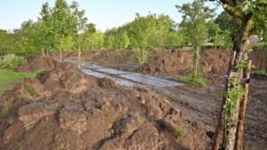 Grondverzet stilgelegd vanwege verstoring dassenleefgebied bij Noorbeek