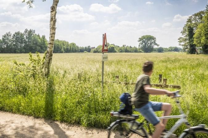 Nog steeds geen nieuwe grote grazers in het Maaspark en ondertussen tiert de vegetatie welig