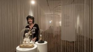 'Rommel' uit depot Domijnen krijgt nieuw leven als fragiele kunst