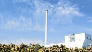 Knieval van kabinet: biomassa in de ban
