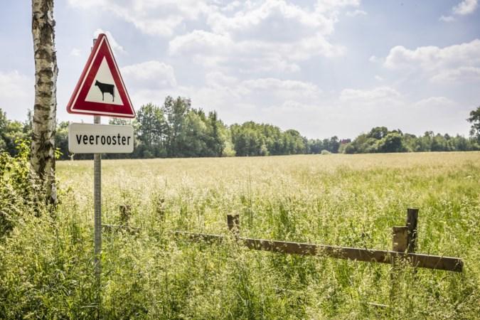 Venray en Horst aan de Maas tikken provincie op vingers over achterstallig onderhoud Maaspark