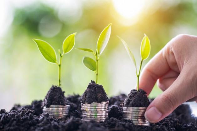 Financieel directeuren worstelen met praktijk van duurzaam beleid