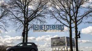 VDL Nedcar kan vanwege dassen dit jaar niet 2000 bomen kappen in het Sterrebos voor uitbreiding