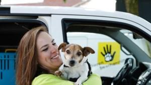 Gemeente Echt-Susteren sluit overeenkomst met Dierenbescherming