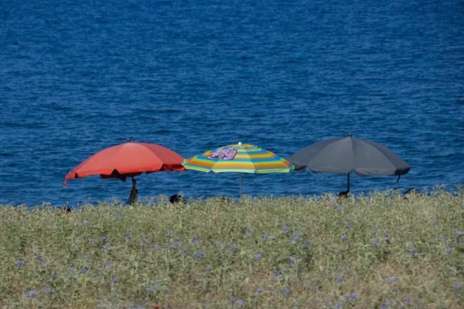 Meteorologen verwachten: 'Juli lijkt warme zonnige maand te worden'