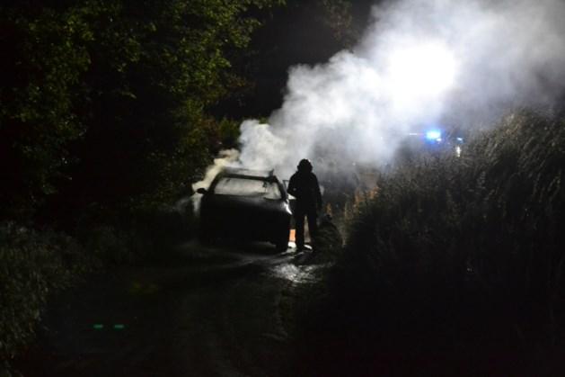 Auto brandt volledig uit in Bingelrade