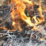 Brandweer Panningen waarschuwt voorzichtig te zijn met vuur in natuur tijdens hete dagen