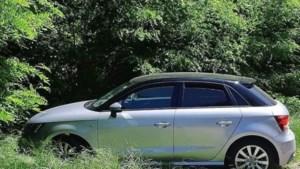 Hond in snikhete auto bij Toverland in Sevenum achtergelaten