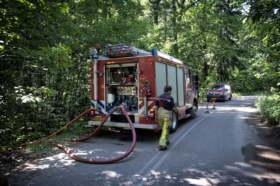 Hoogste staat van paraatheid na twee dagen op rij brand op Brunssummerheide
