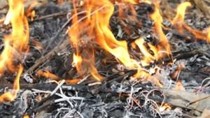 Brandweer Nederweert: wees voorzichtig in de natuur tijdens hitte