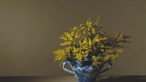 Zomereditie van kunstbeurs Art Affair vervangt ook dit jaar Tefaf Maastricht