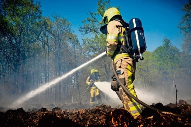 Brandweer Limburg Noord: natuurbrandrisico naar fase 'extra alert'