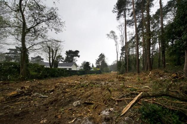 Bomenkap in Moltbos uitgesteld