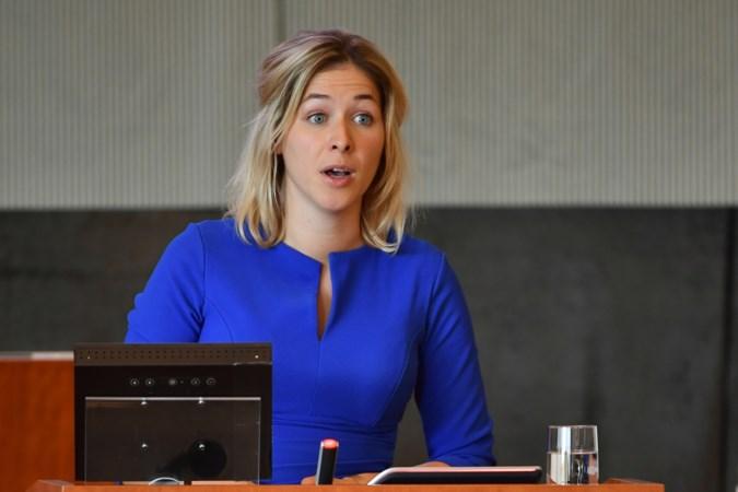 Door fout D66 in Staten staken stemmen: nieuwe stemronde tijdens Nederland-Noord-Macedonië