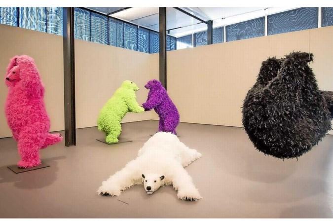 Beren doen aan yoga op expositie van dierenkunst voor het hele gezin in De Kunsthal