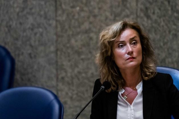 Bergkamp wil verder onderzoek naar sociale veiligheid in Kamer