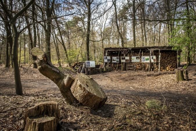 'Maximaal twee activiteiten per maand bij natuurbegraafplaats Weverslo in Merselo'