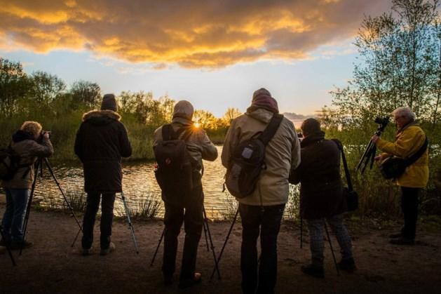 Fotografieworkshops door Nando Harmsen in Nationaal Park De Groote Peel