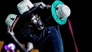 Groen licht voor driedaags stadsfestival Sint Rosa in Sittard: hommage aan Toon Hermans