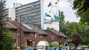 Mural in Sittard als eerbetoon aan de geschiedenis van het Limbrichterveld én Toon Hermans
