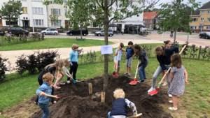 Initiatiefgroep Montessori College Maastricht plant boom ter gelegenheid van het startmoment
