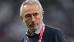 Emiraten-bondscoach Bert van Marwijk kent route naar WK 2022 in Qatar