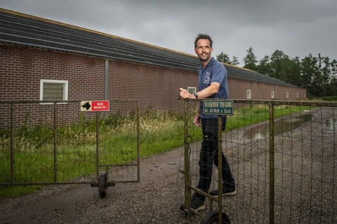 Dik 50 varkensboeren in Limburg stoppen ermee en dat is niet altijd makkelijk: 'Mijn vader bouwde het op en ik breek het af'