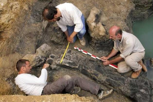 Nieuwe studie: dino's al aan het uitsterven voor asteroïde op aarde insloeg