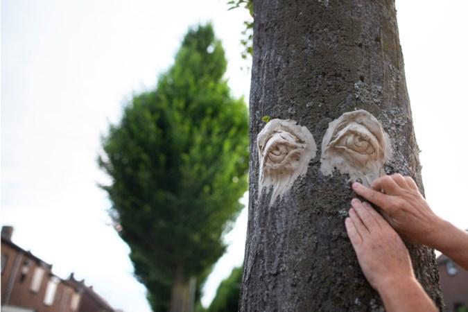 Ludieke actie: bomen treuren met trieste blik om kap in Elsloo