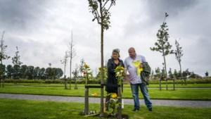 Herdenking ramp met MH17 opnieuw digitaal