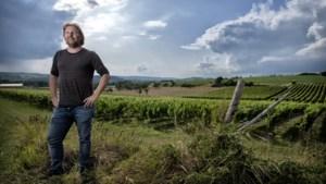 'Voerendaal moet mooiste wijngemeente van Limburg worden'