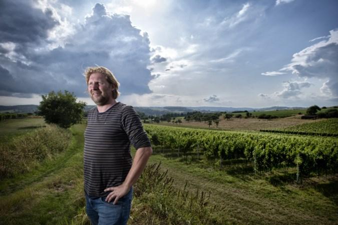 Wijndomein St. Martinus: 'Een plan om te omarmen, alleen niet op die plek'