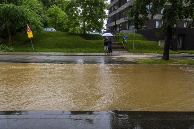 Code geel in Limburg vanwege stevige onweersbuien