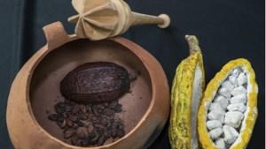 De 'high' van chocola, maar dan zonder de calorieën: dankzij deze uitvinding kan het