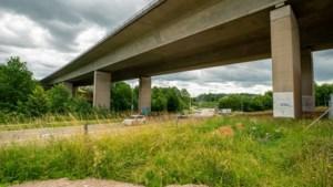 Afgeschoten plan voor murals op pijlers A79: kosten bijna een ton