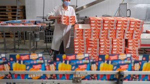 Deze fabriek in Roermond voorziet de halve wereld van waterijs: 'Marco Borsato mag je wakker maken voor een dubbellikker'