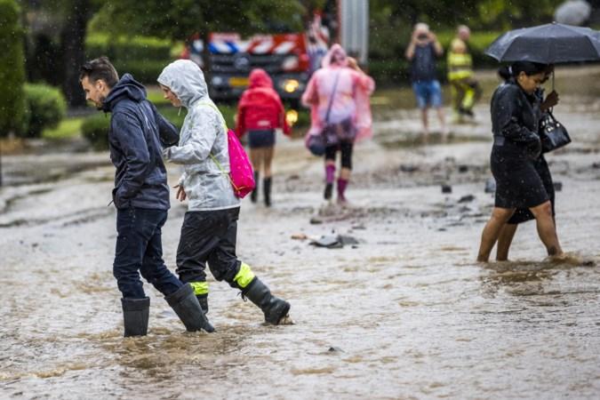 Hoe Nederlands zijn onze zomers nog? Volgens weerman Thijs Zeelen is het aantal hittegolven spectaculair toegenomen