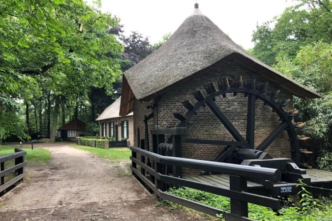 Wandelen langs jeneverbessen en een bijna vernietigd stukje Noord-Limburg
