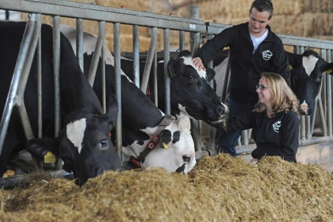 Melkveehouders Mark en Ineke uit Velden willen nieuwe brug slaan tussen boer en burger