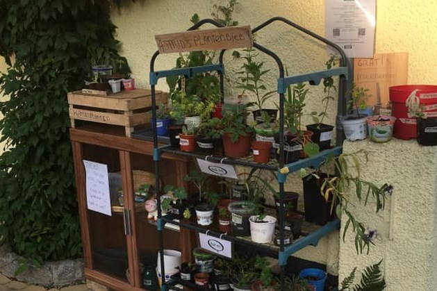 Plantjes van Astrid's plantenbieb in Bocholtz wachten op nieuwe eigenaar