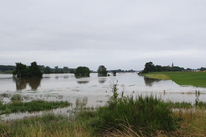 Grote problemen zijn er nog niet in Noord-Limburg, maar het water komt eraan: 'Eerst zorgen dat we alles weg hebben'