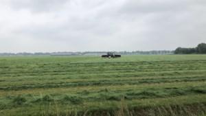 Boeren Nederweert krijgen meer tijd voor de bouw van een vergunde stal