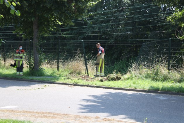 Voertuig van het spoor gehaald: treinverkeer tussen Sittard en Heerlen weer hervat