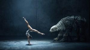 Theaterfestival Cultura Nova in de startblokken, nieuwe 'gast' is de anderhalve meter afstand