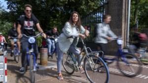 Vrees voor chaos door laten van lichte elektrische voertuigen: 'Stel paal en perk aan delen fietspaden'