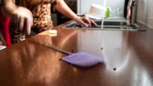 Plaagdierbestrijder moet bron vliegenoverlast in Beek en Neerbeek achterhalen