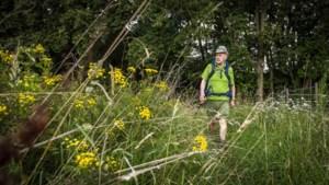 Bij gebrek aan Venloop en Kennedymars wandelt Jo (75) maar naar Oostenrijk