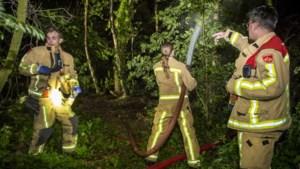Limburgse brandweerregio's krijgen team dat zich specialiseert in het bestrijden van natuurbranden